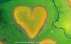 Coeur de Voh, New Caledonia by Filip Kulisev, Master QEP, FBIPP