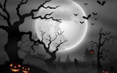 halloween_noc