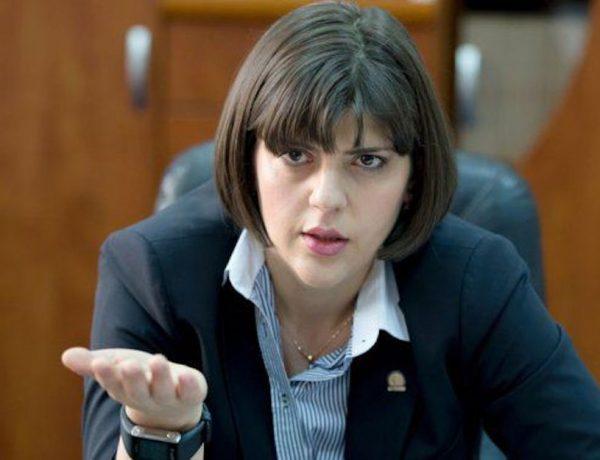 Лаура ковеши она сажала по одному коррупционеру в день 95